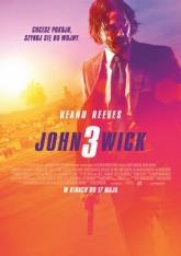 JOHN WICK 3 (NAPISY)